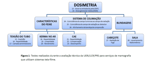 e0a8687ec8179 Cabe salientar que a avaliação técnica realizada pelo UERJ LCR PRS não  consiste no Programa de Garantia de Qualidade que a legislação nacional  exige.